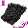 Braiding, Buy Hair Direct 중국을%s 깊은 Wave Human Hair