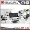 Sofà commerciale moderno dell'ufficio dell'ospite dell'acciaio inossidabile della mobilia (NS-S2318)
