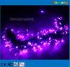 De purpere 220V Lichten van het Koord van Kerstmis van de Vakantie van 10m Decoratieve