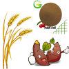 Bio Fulvic ácido de Qfg con minuto de la pureza elevada el 80%