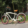 Bicicleta eléctrica de la playa de la batería de litio de la venta caliente 26  (RSEB-1214)