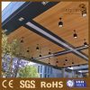 Decoración artística de la casa del techo del techo de madera compuesto de la superficie plana