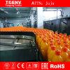 Riche expérience de la chaîne de production de jus de melon d'eau Cj1123