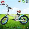 Facile à conduire porter la bicyclette se pliante électrique de mini vélo pliable