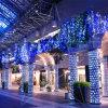 さまざまな形ケルンで禁止される多彩なLEDの装飾のネットライト