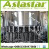 Remplissage de 3L 5L et machine à emballer liquides automatiques rotatoires