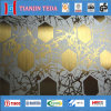 Elevator를 위한 0.6mm Stainless Steel Decorative Sheet