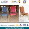 Vector y sillas para los acontecimientos y las funciones al aire libre de la boda
