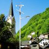 2016 8m Pool 60W de LEIDENE Zonne Hybride Straatlantaarns Van uitstekende kwaliteit van de Wind (