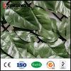 Heißer verkaufender freundlicher grüner künstlicher EFEU Pflanzenhecke-Zaun