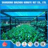 Сеть тени HDPE 80g аграрная зеленая Sun