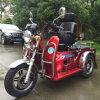 110cc자동인력거성숙한 소형 무능한3개의 바퀴 기관자전차Elderly를 위해 (SY110ZK-D)