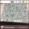 Дешево востоковедные белые плитки гранита G640 для настила/стены