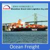 China Seafreight a Santo Domingo Dominica do serviço de Shenzhen/Guangzhou FCL/LCL