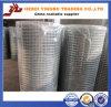Покрынная PVC сваренная ячеистая сеть (ISO9001), загородка фермы