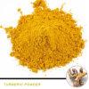 Natürliches Pigment-Gelbwurz-Oleoresin-Gelbwurz-Puder