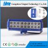 고품질 Csp LED 칩을%s 가진 최고 가격 LED 표시등 막대