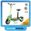 도매를 위한 36V 1000W 2 바퀴 Evo 전기 스쿠터