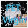 Los gránulos blanco del animal doméstico Virgen