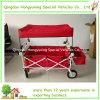Carro novo da ferramenta de dobradura do bebê com a cesta colorida do dossel e do armazenamento