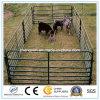 Il bestiame della capra delle pecore galvanizzato coltiva la rete fissa