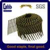 Clavo galvanizado muebles del aire Coil/Roofing del oro del hierro (2125)
