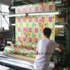 중국은 PVC 롤 마루를 만들었다