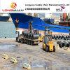 Logística Service Sea Freight (Shanghai a Lagos, a África)
