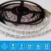 CE SMD 5050 30 LED per Metro LED striscia flessibile