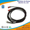 Câble équipé de harnais de fil de prix usine avec le petit connecteur mâle