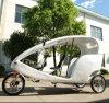 Lazer Electric Rickshaw para The Market japonês (DCQ500DQZK)