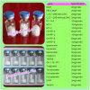 Peptides PT141 Peptides PT141 Peptides PT141 van Hormonen voor de Menselijke Groei met GMP