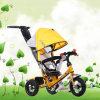 Лучший Бэби Трехколесный велосипед, высокое качество Трехколесный велосипед для детей (TS-5182A)