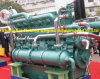 двигатель тепловозного мотора скорости средства 925HP/900rpm Yuchai морской (YC6CL920L-C20)