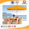 Таблица и стулы ротанга пляжа напольные с зонтиком (UL-511)