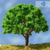De geschraapte Boom van de Draad (B1) voor Landschap. Model (gebeëindigde) Tree