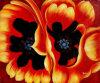 Qualitäts-Wiedergabe-Segeltuch, das energische grosse rote Blumen (LH402000, malt)