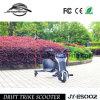 Cabritos aprobados 100W Trikes del Ce para la venta
