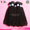 Indisches Remy rohes Haarpflegemittel, Afro-Torsion-Haar-Flechten-Menschenhaar-Extensionen tief lockig