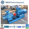 12V DC 바다 수도 펌프/소형 기어 기름 펌프