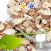 Poudre de Lumbrokinase d'extrait de ver de terre/extrait de ver de terre