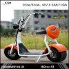 2016 батарея самоката 800With1000W Citycoco самых новых 2 колес цветастая ориентированная на заказчика электрическая