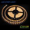 SMD 5050 30PCS/M LED Strip