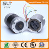 CC Brushless Gear Motor di 6V-36V BLDC per Electric Tools