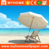 Himmel-Tapeten-Wandbilder der See-und Strand-Landschaft-3D