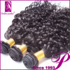 巻き毛のバージンの毛の織り方100%のブラジルの人間の毛髪の卸売