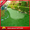 SGS Goedgekeurd het Modelleren Binnen en Openlucht Kunstmatig Gras