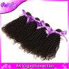 Do cabelo brasileiro não processado em linha reta 100% do Virgin dos pacotes brasileiro Curly Kinky Yaki em linha reta