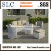 Meubles extérieurs réglés de sofa extérieur neuf d'armure (SC-A7517)