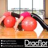 PVC Gym Floor für Training Class